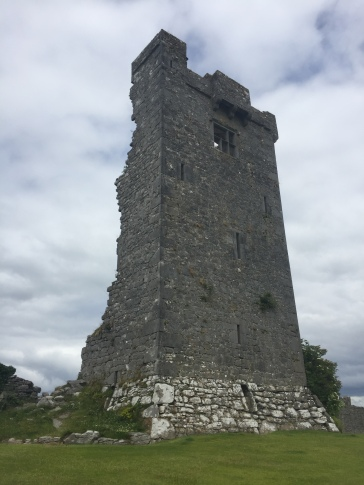 The front of a typical Irish tower house. The back half has fallen off.