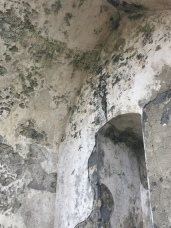 Original plaster still on the walls on the inside of a crumbling Irish tower house