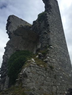 One half of an ancient Irish tower house still stands, the interior now visible and covered in plant life