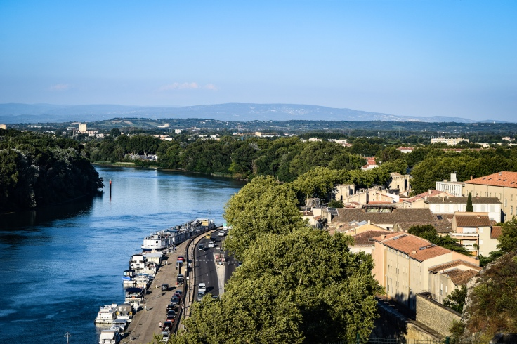 The Rhone surrounded by trees and the town and buildings of Avignon