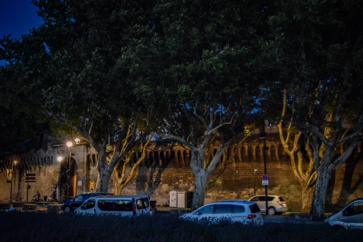 The ramparts of the city center of Avignon with scattered trees in front